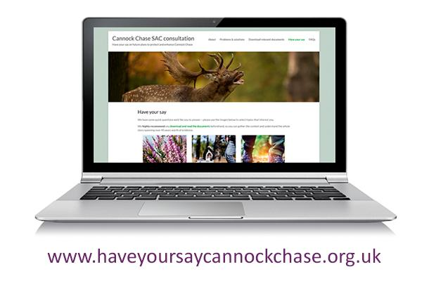 laptop with Cannock Chase consulation website displayed